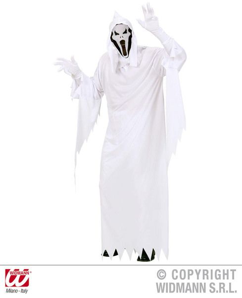 Adults Ghost Costume Halloween Fancy Dress