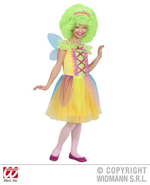 Girls Fairy Costume Fancy Dress