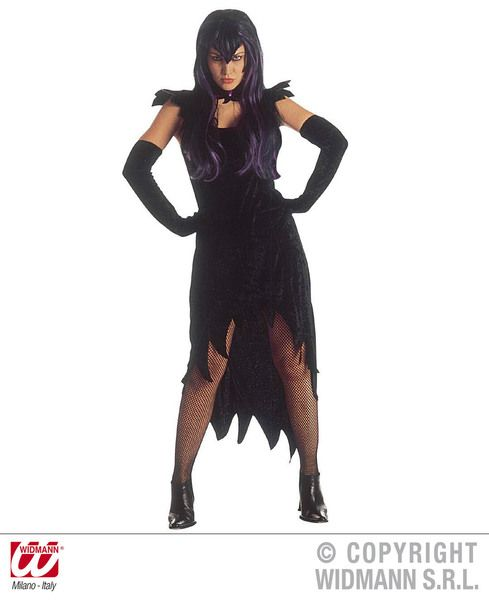 Ladies Dark Mistress Costume Halloween Fancy Dress