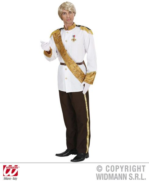 Mens Charming Prince Costume Fancy Dress