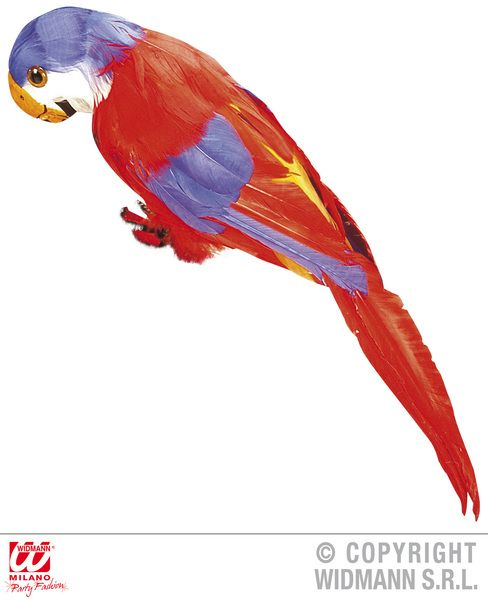 Parrot Decorative Feathered - Party Decoration Animal