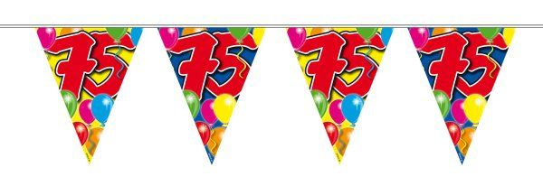 Balloon Design Bunting 75th Birthday 1034 P