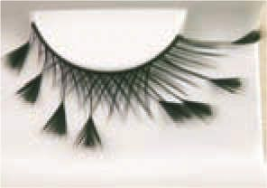 Eye Lash set Feather Black Cosmetics Makeup