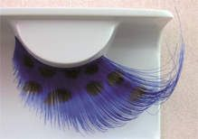 Eyelash Eye Lash set Feathers Black Spot on Blue