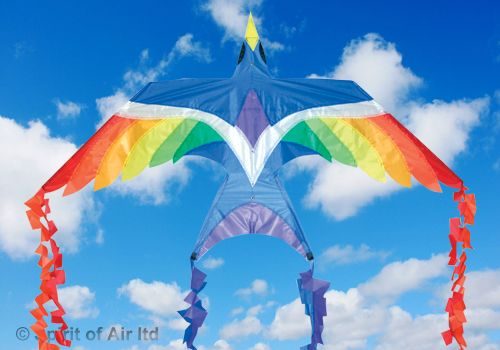 FireBird Flying Creatures Kite for Adult & Childrens Outdoor Beach Camping Sports Games & Gifts