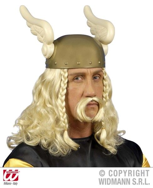 Gaulois Wig With Moustache Blonde Viking French Gaul Roman Asterix Fancy Dress