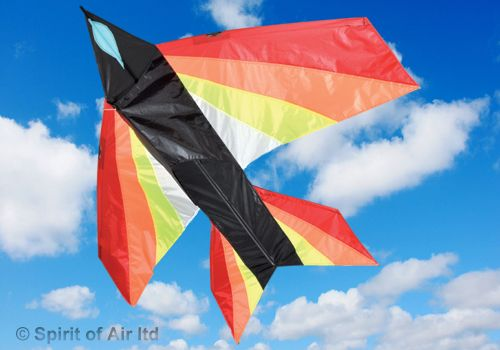 Jet Delta Flame Plane Kite for Adult & Childrens Outdoor Beach Camping Sports Games & Gifts