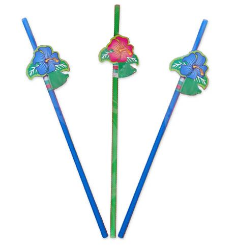 Party Drinking Straws BBQ Birthday Wedding with Flowers 24cm 8's