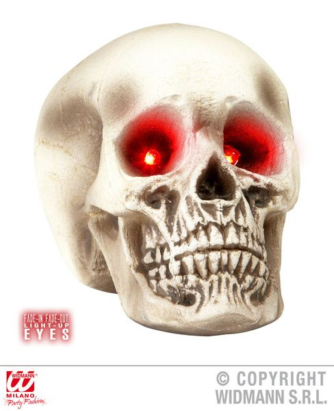 Skull With Light Up Eyes 22 cm Decoration Pirate Halloween Skeleton Head Party