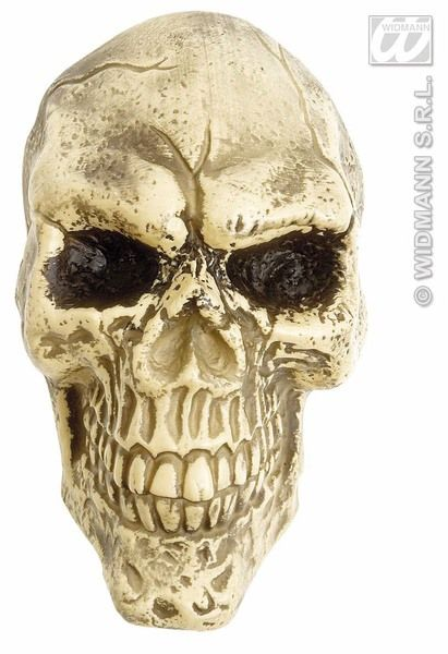 Wall Skulls 25cm Party Decoration Halloween Pirates